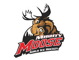 Mighty Moose Hockey